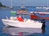 boat-dorset-1